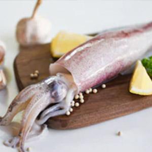 3-Squid